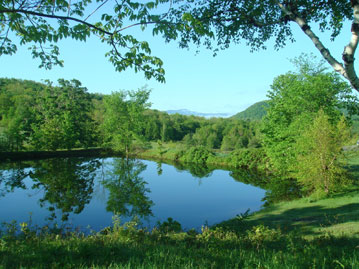 Upper Pond, Spring 2010