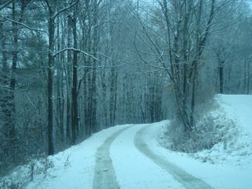 Vermont country road with snow on the trees alongside